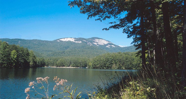 Las Blue Ridge Mountains se extienden hacia al norte desde el norte del Estado de South Carolina