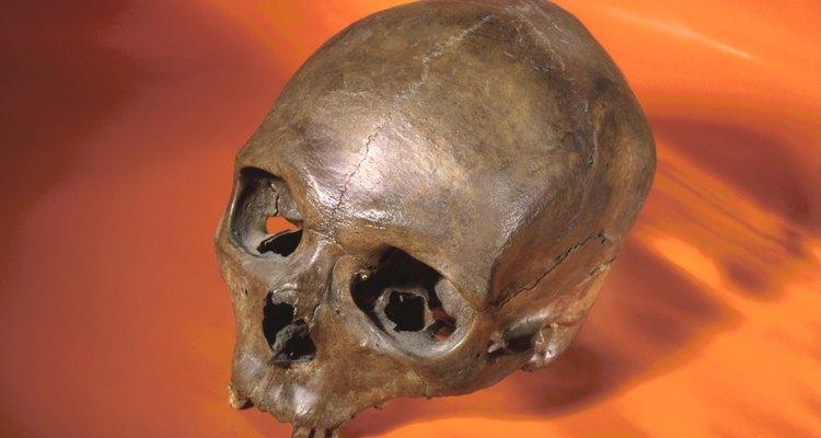 Los seres humanos modernos surgieron hace unos 200.000 años.
