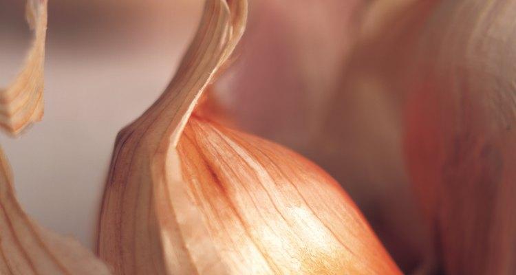 Los dientes grandes de ajo producen bulbos grandes en pocos meses.