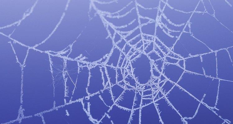Las telarañas falsas pueden ser un detalle decorativo aterrador para cualquier hogar u oficina.