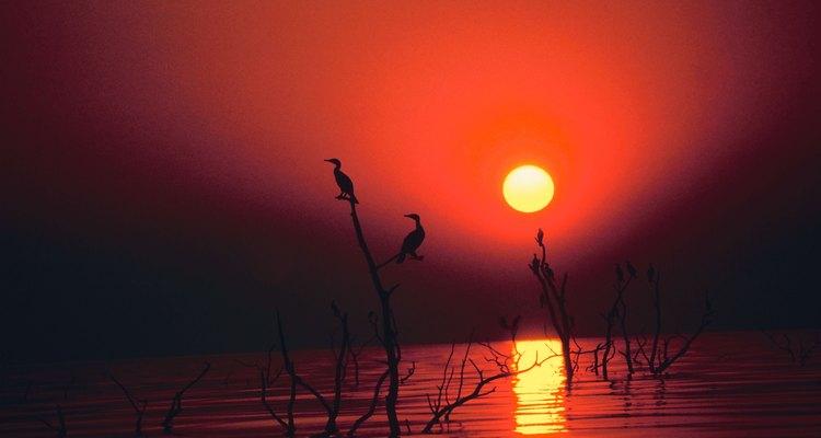 Lago Tanganyika
