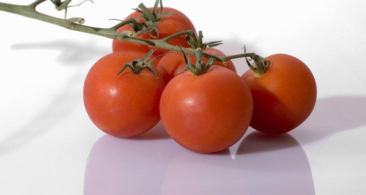 Congele os tomates e aproveite seu sabor por mais tempo