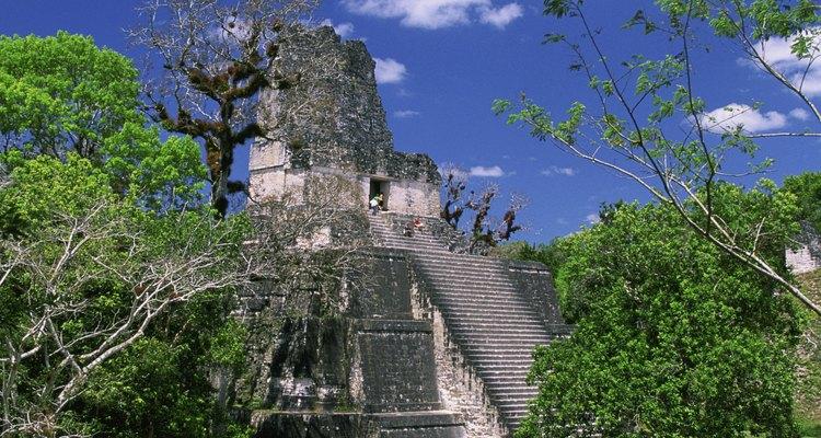 La ceiba es el árbol nacional de Guatemala.