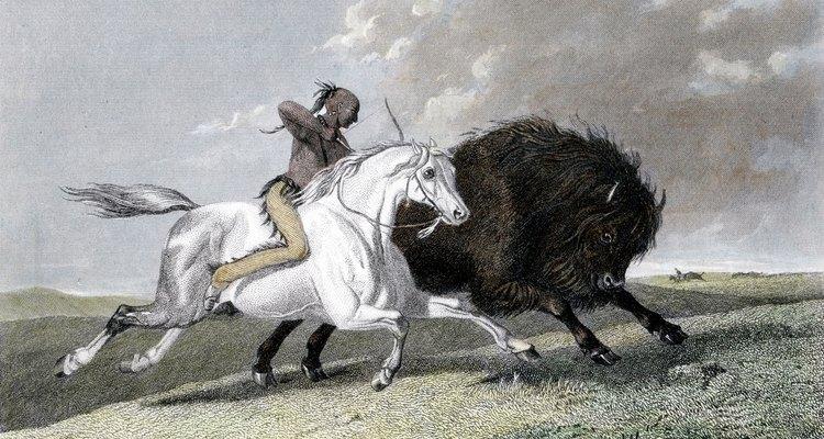 Los caballos cambiaron la forma en que los nativos americanos interactuaban con la naturaleza.