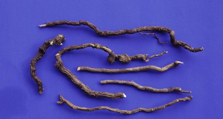 Hemidesmus indica or Indian sarsaparilla roots