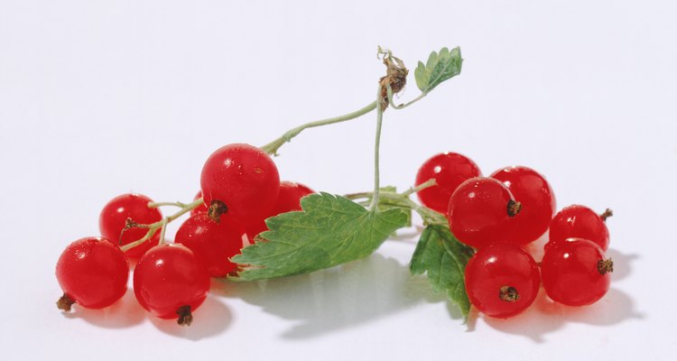 Red currants are worth growing.