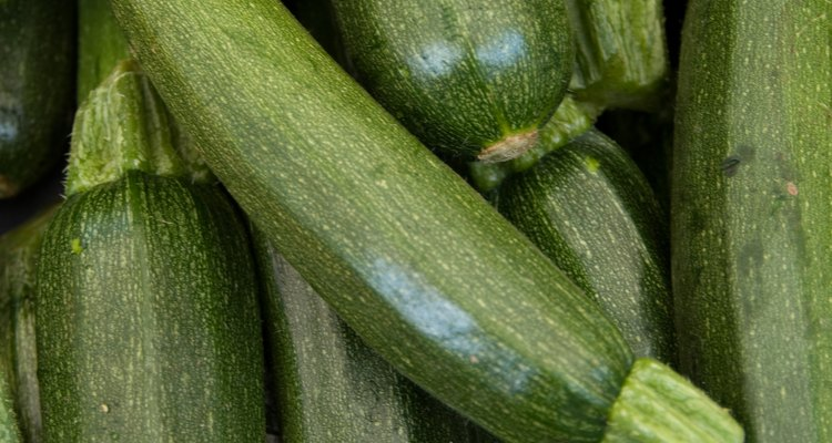 Close-up of fresh zucchini squashes