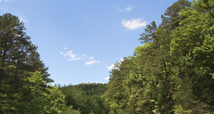 Las cascadas son muy abundantes a lo largo de muchas excursiones en Arkansas.
