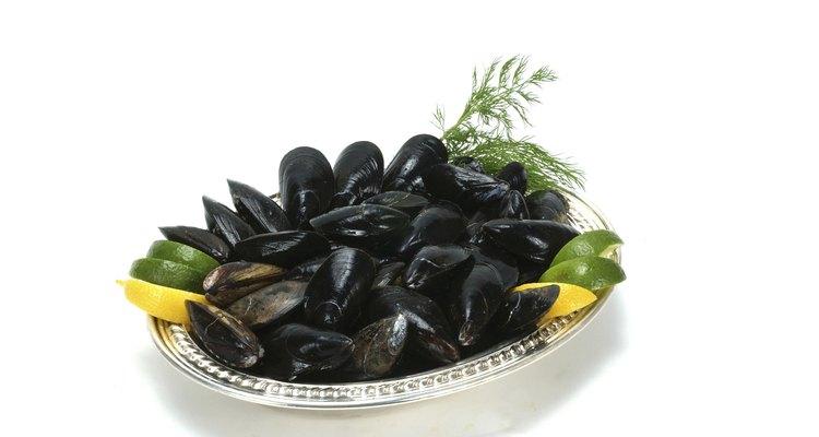 Pegue seus próprios mariscos e faça um banquete de frutos do mar