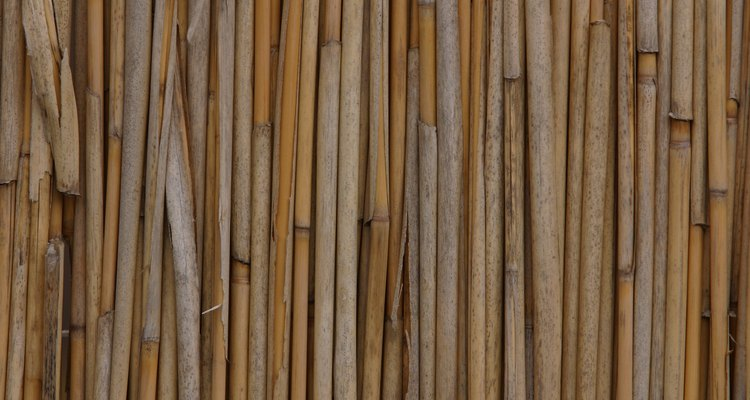 A bamboo reed fence is a good screen for privacy.