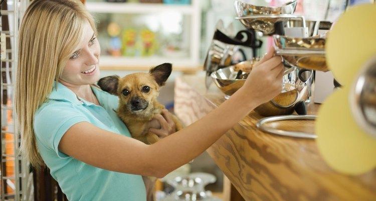 En las tiendas de mascotas existen pañales y bragas para tu perrita.