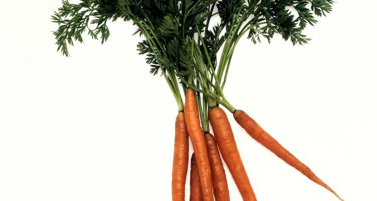 Las raíces de vegetales y los tubérculos crecen bajo tierra.