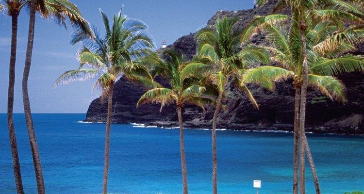 Pescar desde las costas de Oahu es una tradición por mucho tiempo honorada.