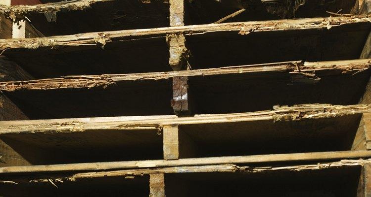 As desvantagens das paletes de madeira abriram o caminho para as paletes de plástico