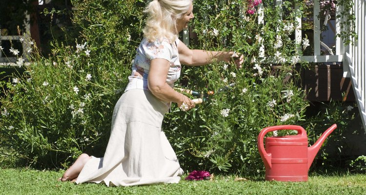 Cántale a tus plantas, puede que lo disfruten