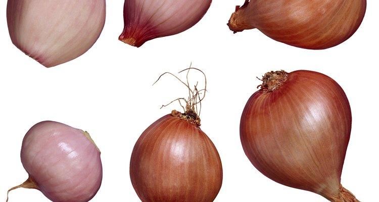 Em uma receita, use cebolinhas brancas em vez de cebolas para um sabor diferenciado