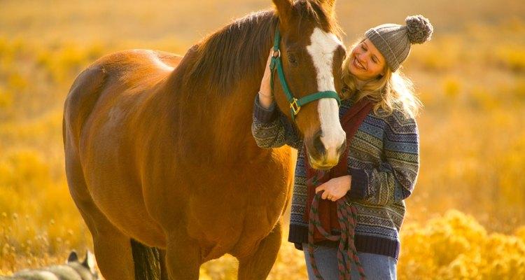 Passe um tempo com seu cavalo criando uma amizade e não exigências
