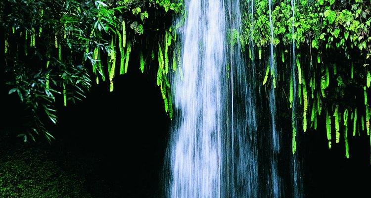 Una cascada en la costa Hana establece el ánimo.