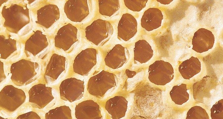 Panal de abejas.