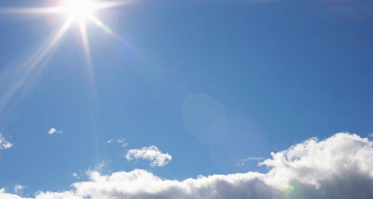 Para permitir que a planta colha energia do sol, deve-se remover a serapilheira durante o dia