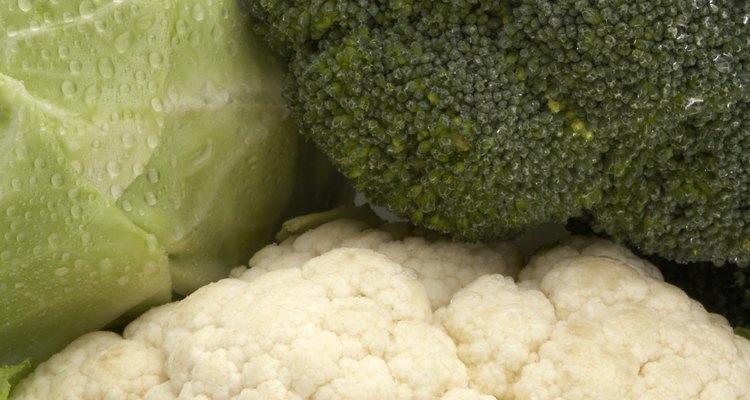 O brócolis é uma boa fonte de proteína para seu pássaro