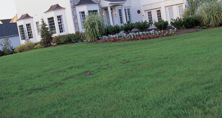 El azufre puede ayudar a estimular la salud del césped y otra vegetación del jardín.