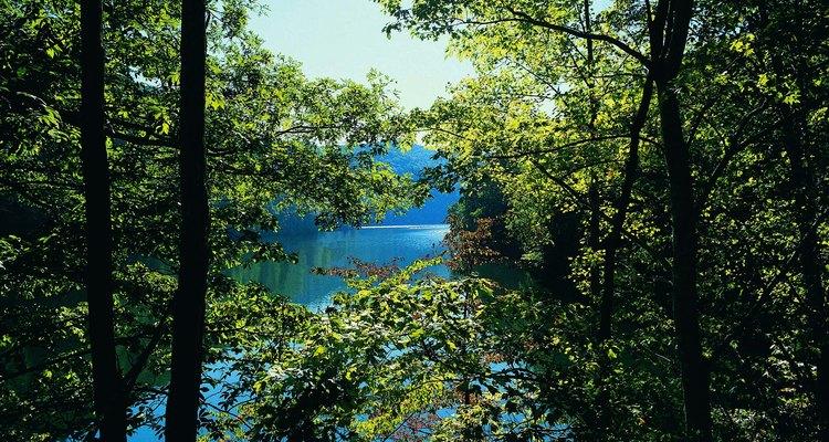 El lago Fontana tiene una costa virgen.