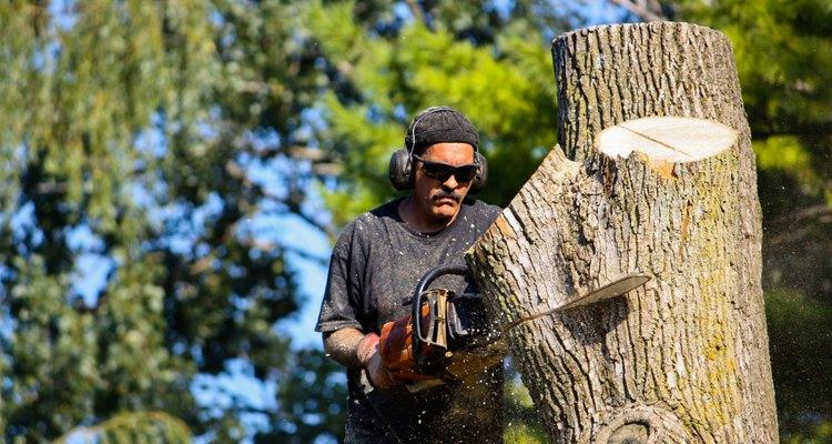 O custo pode variar dependendo do tamanho da árvore