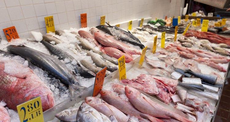 Variedades de peixe oferecidas em um supermercado