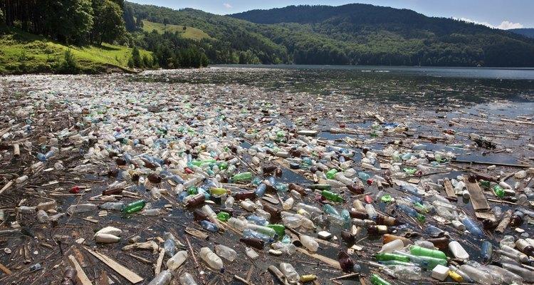 La contaminación perjudica a los ecosistemas.