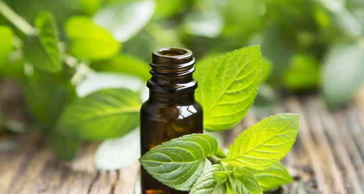 Natural Mint Essential Oil in a Little Glass Bottle