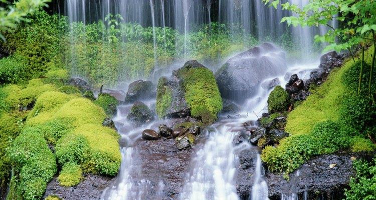 Escalones de piedra siguen un sendero de 19 cascadas en Watkins Glen State Park.