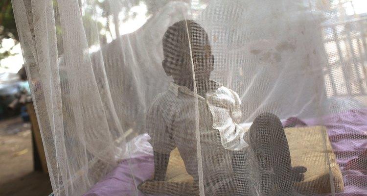 Os mosquiteiros evitam que os mosquitos piquem sua pele