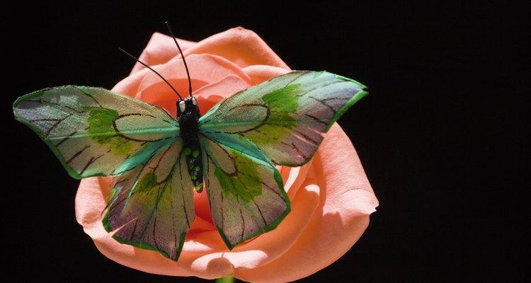 Los animales, como las mariposas, son esenciales en la propagación de las células sexuales masculinas de las plantas.