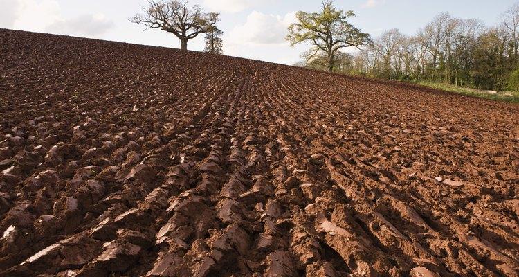 Los suelos varían de un lugar a otro dependiendo a los materiales originales.