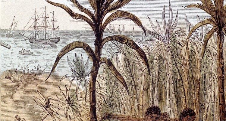 Los comerciantes estadounidenses se enriquecieron haciendo negocios con la melaza, los esclavos y el ron.