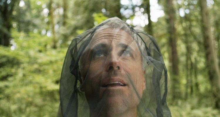 En algunas áreas del mundo se requieren redes como protección contra los mosquitos.