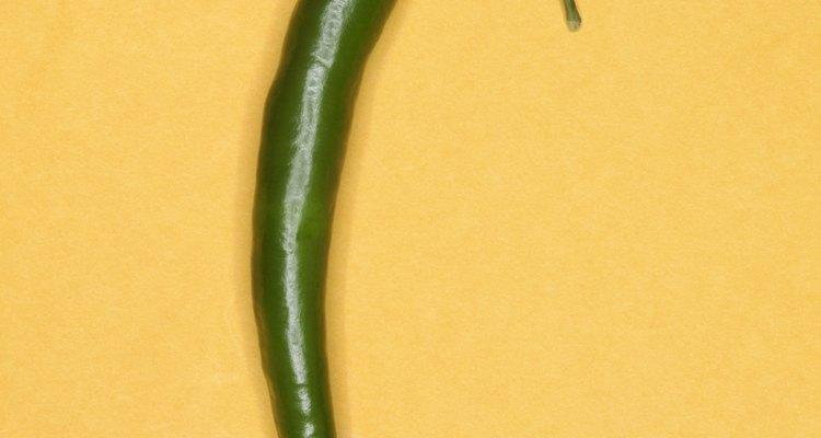 Los frutos se emplean tradicionalmente en la cocina, inmaduros y maduros, crudos, asados, cocidos, al horno, secos o en polvo.