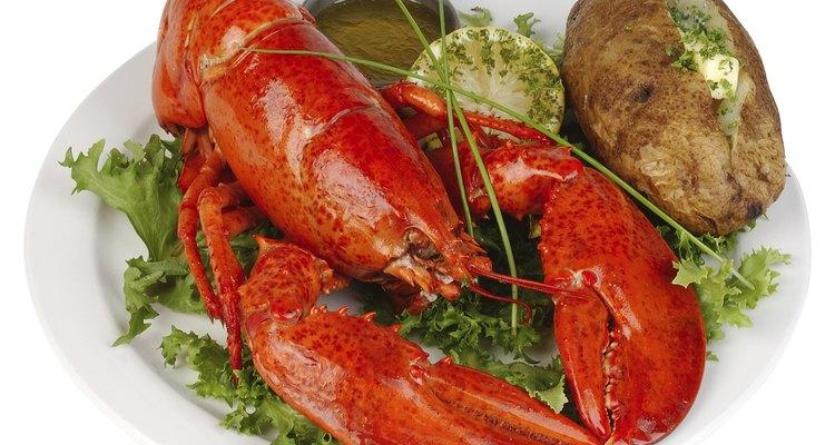 A cauda não é o único lugar onde a carne suculenta pode ser encontrada em uma lagosta