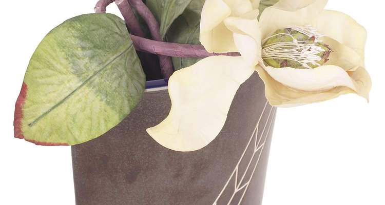Las astillas de las cáscaras del coco se usan para cultivar orquídeas.