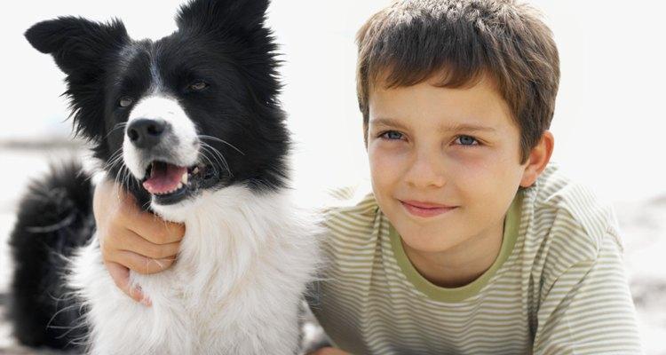 Los perros son excelentes mascotas para cualquier niño, en especial para uno con autismo.