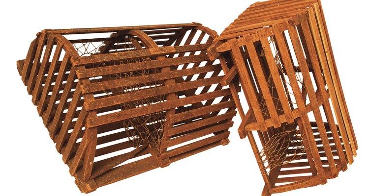 Armadilhas de madeira são mais baratas