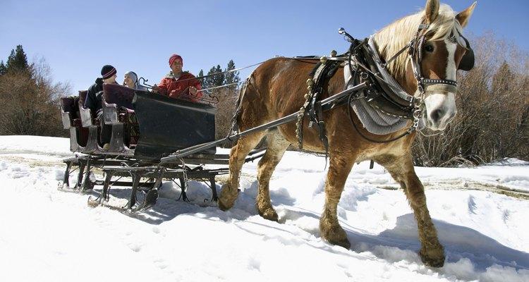 Incluso un carro construido a partir de un kit o comprado totalmente ensamblado debe equilibrarse antes de engancharlo a tu caballo, para seguridad del mismo.