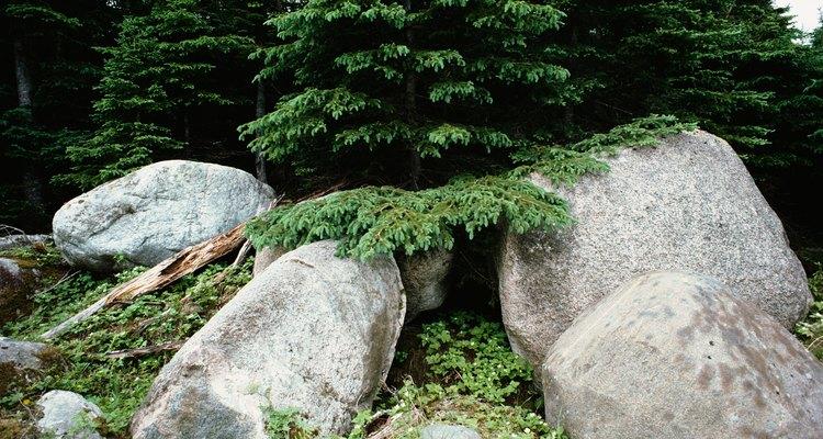 Fazer suas próprias pedras é um projeto simples