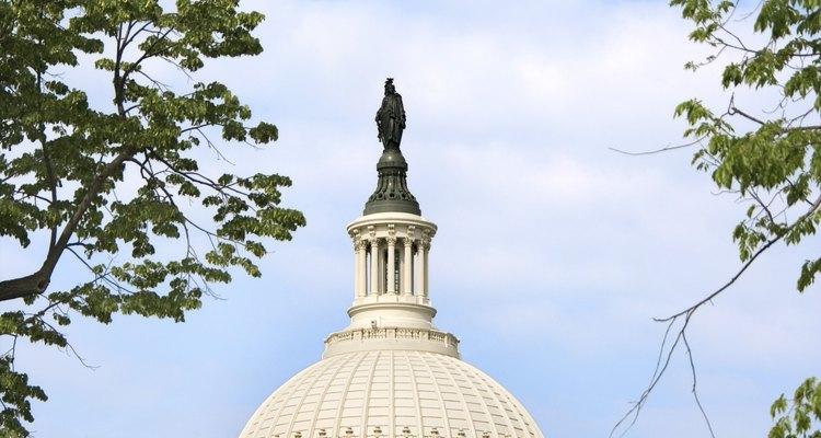 El Congreso de EE.UU. es un órgano de gobierno democráticamente elegido.