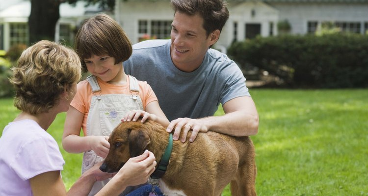 Family playing with dog outdoors