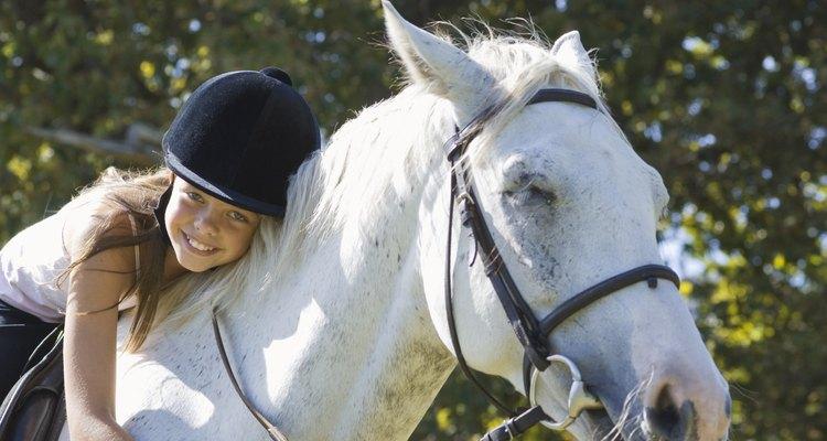 Faça estes petiscos para seus cavalos
