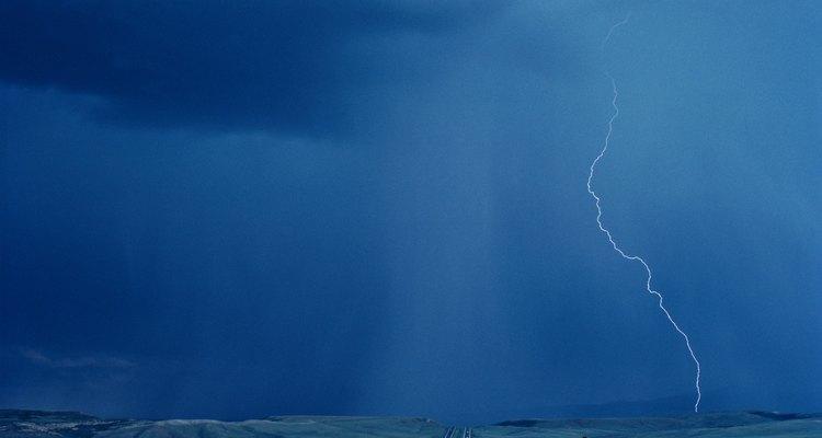 Las intensas lluvias regeneran los bosques.