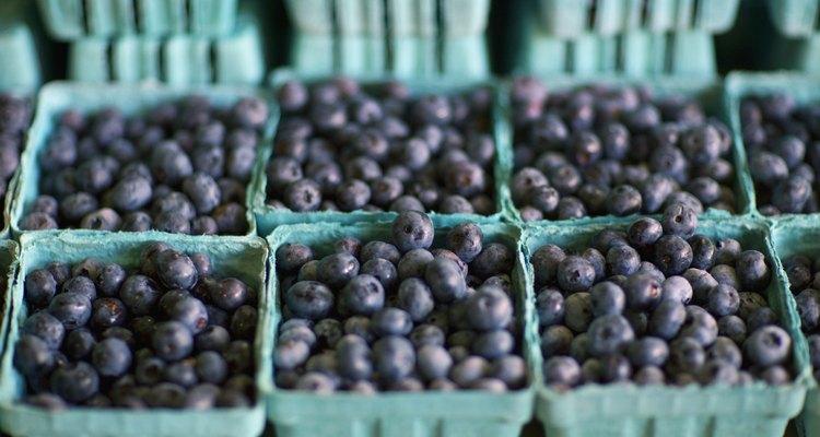 Blueberries in Cartons