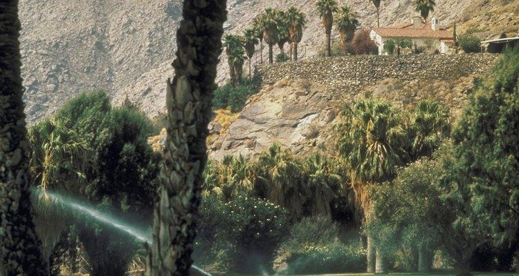 Palm Springs es un sitio muy exclusivo.